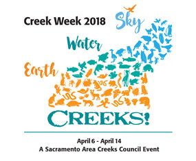 Creek-Week-2018